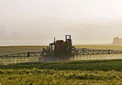 Bild von Ackerbau. Landwirtschaftliche Maschine sprüht giftigen Pestiziden oder Insektiziden auf Plantagen