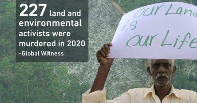 Zahl der getöteten Umweltschützer steigt
